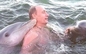普京撸海豚