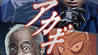 【斗牌传说】动画版+3季真人版+2部电影